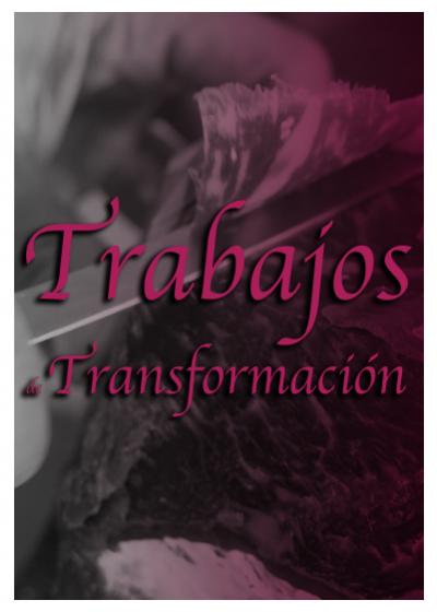 Trabajos de transformación