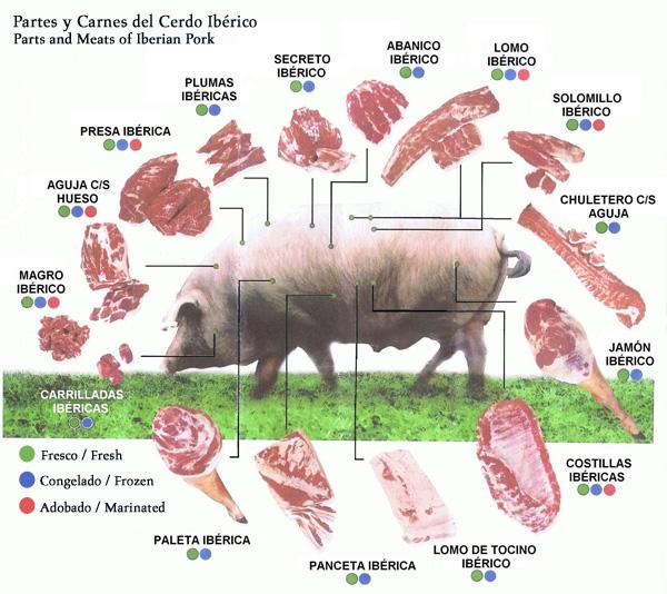 partes-carnes-cerdo-iberico